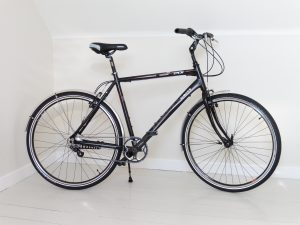 Rohloff, hub gear, inexpensive, cheap, hub gear bike, hub gear bicycle, easy gears, easy to use, easy pedalled, easy to climb hills, berwick, northumberland, coast to coast, coast and castles, sustrans, easy cycling, twist shifter, border loop, tweed cycleway,